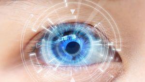 zöld-vörös szem teszt diagram
