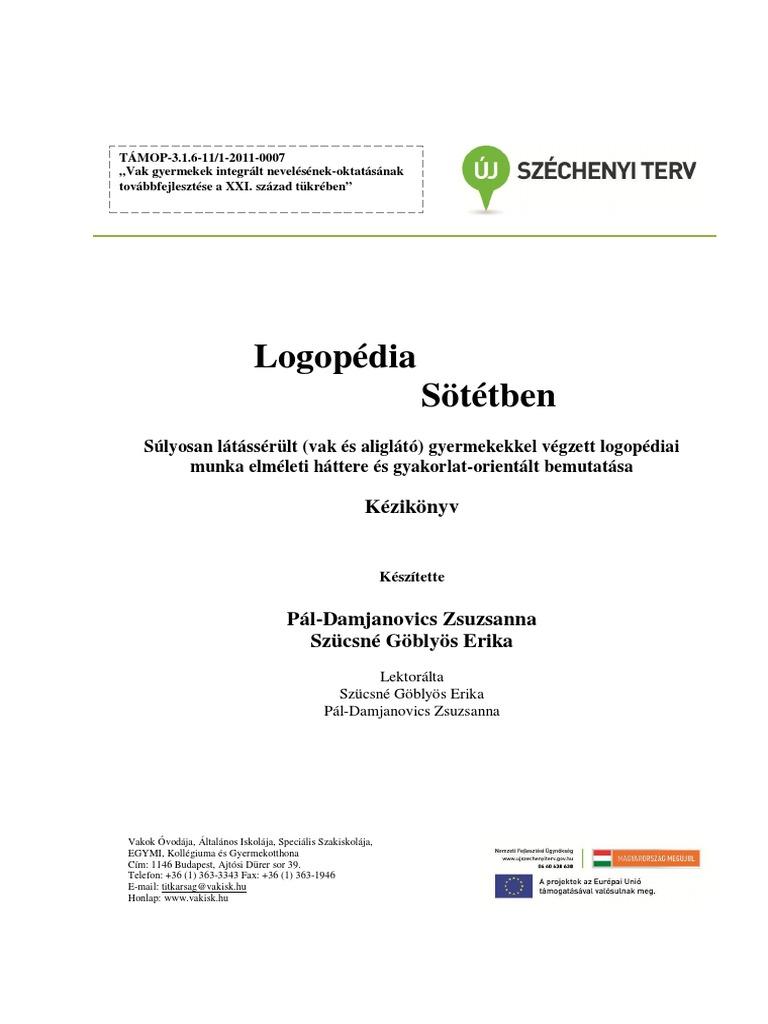 látássérülési kézikönyv)