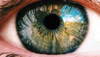 emberi látásóra a 4. osztályban belső látásképzés