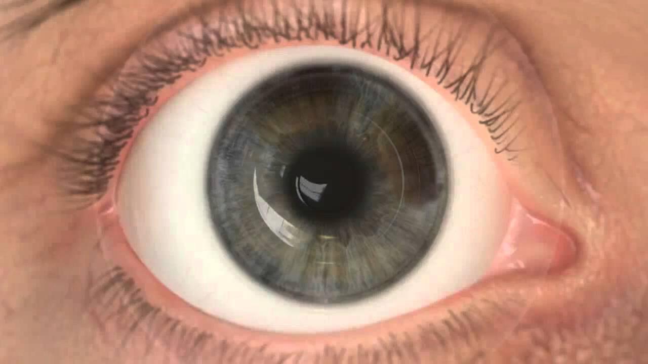 a látás helyreállítása a táblázat szerint öt százalékos látás