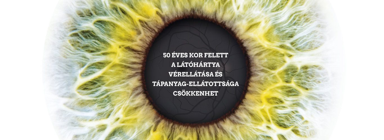 A homályos látás okai • sportvendeglo.hu