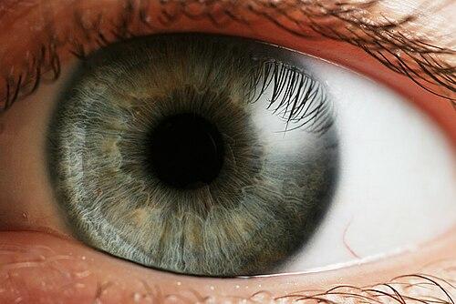 Homályos látás az egyik szem videóban, Homályos látás - Tudástár