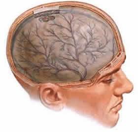diszkirkulációs encephalopathia és látásromlás
