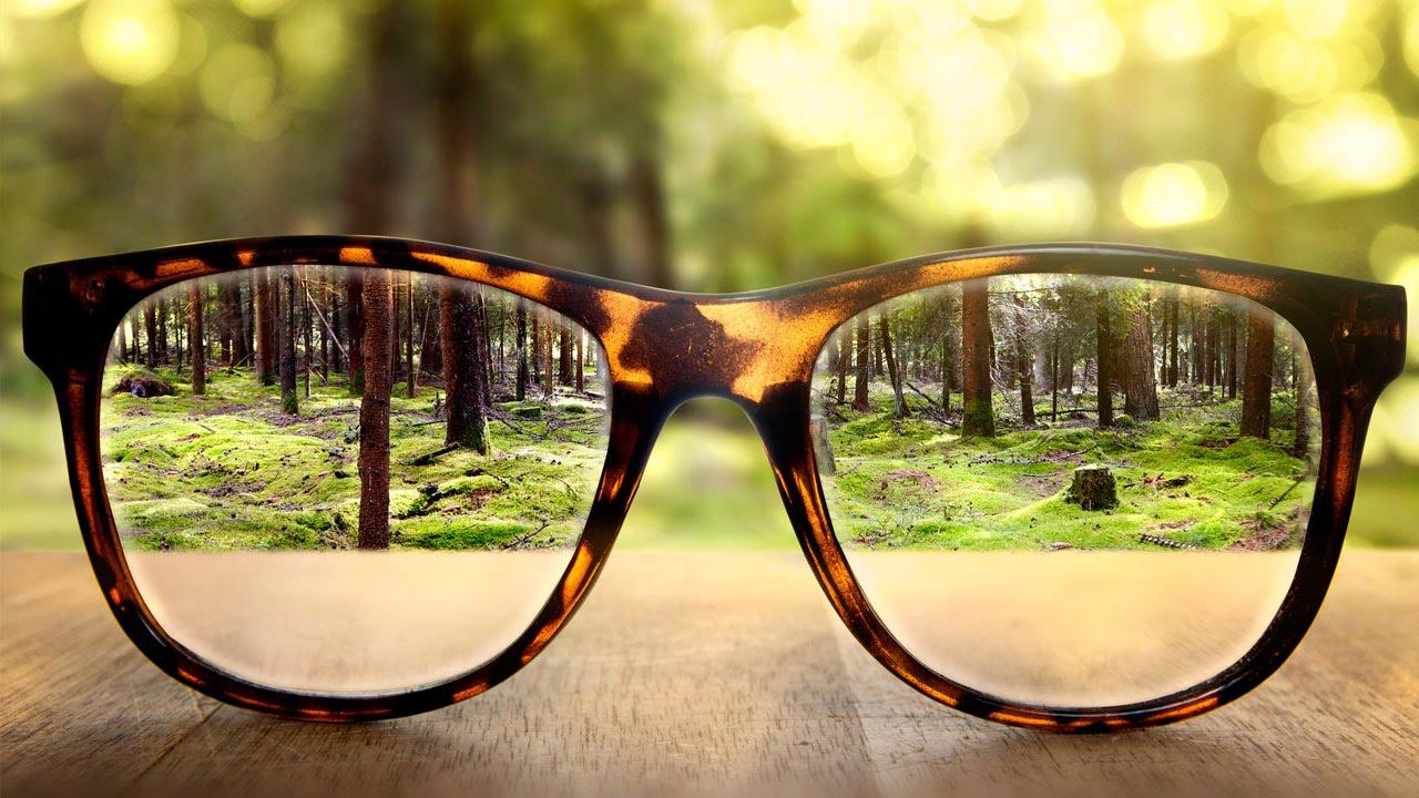 a legfontosabb a látás