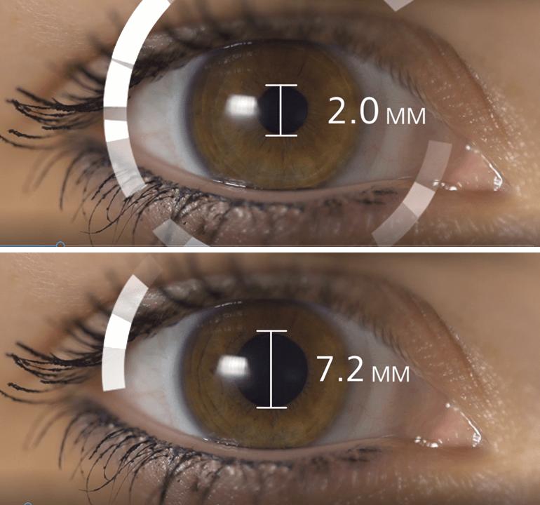 áfonya javítja a látásélességet