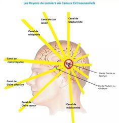 hogyan lehet javítani a tudatalatti látását)
