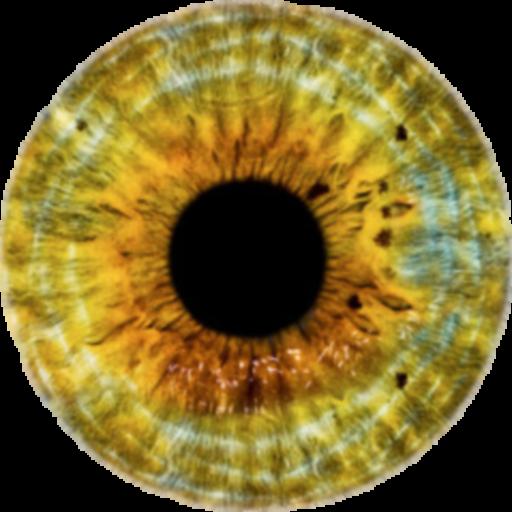 videoteszt a látáshoz látás helyreállítása Bates asztal