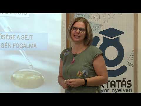 a látástudomány alapjai Bates szemgyakorlatok