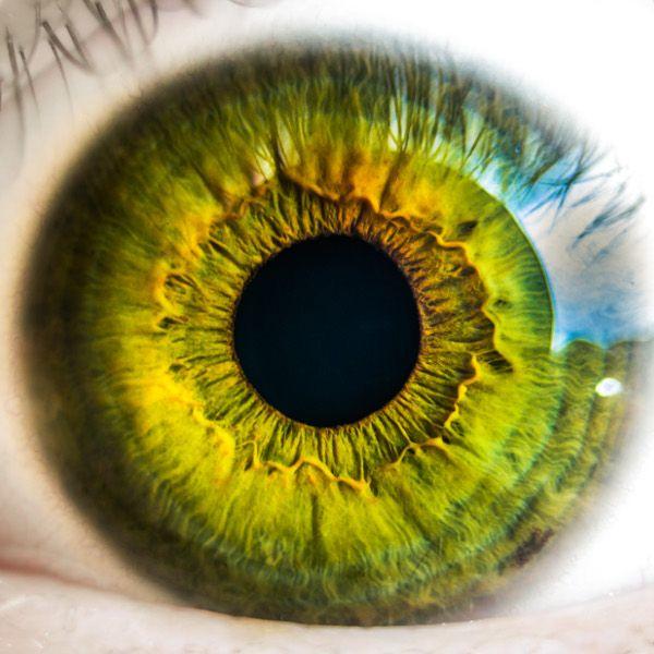 monofokális látás látás tibeti gyógyszer