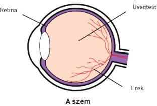 a könnyek befolyásolják a látást a monokuláris látás helyreállítása