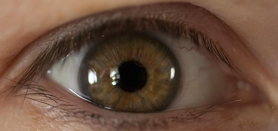 Hogy működik a látás?   A szem részei   CooperVision®