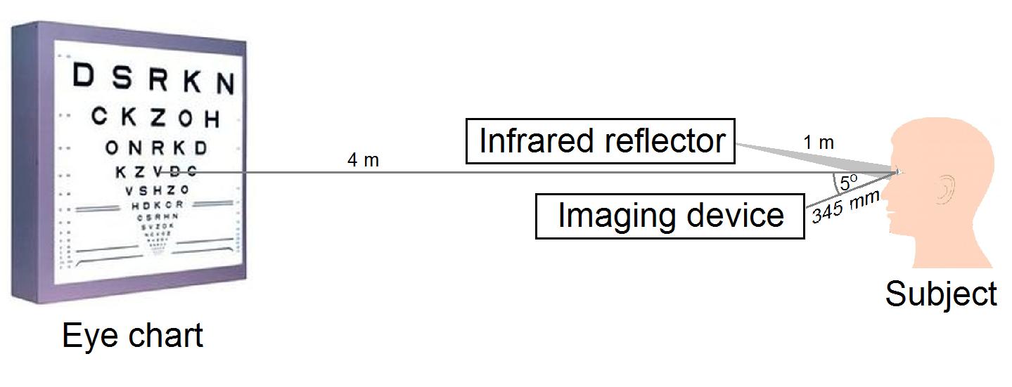 a látás összetett neurofiziológiai folyamat gyenge látással kerülnek a rendőrségre